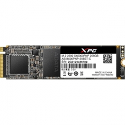ADATA SSD M.2 2280 (ASX6000PNP-256GT-C)