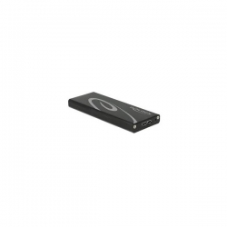 Delock HDD Ház - 42570 (M.2 NGFF SSD(2280, 2260, 2242, 2230) -> USB 3.1)